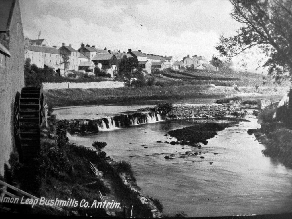 Bushmills Falls Postcard